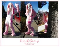 Fullsuit - Vern the Bunny by Hyokenseisou-Cosplay