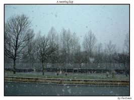 the snow in France by planzman