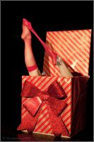 The Present by WPphotos