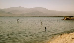 The Salton Sea 1 by mattyobrien