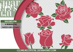 Pack PNG | Rosas by clearlikecrystal