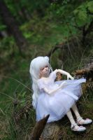 In the forest 3 by aniszyma