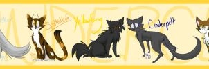 Thunderclan medicine cats by imajenink