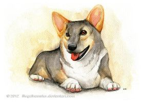 Corgi Commission watercolor by IllegalHamsterThe