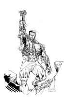 Colossus Polymanga 2014 by SpiderGuile