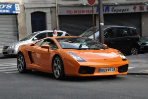 Gallardo by SnowPinappleYeah