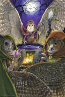 Owl Women of Vaethiniel by windfalcon