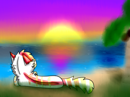 Summer Paradise by campfyre