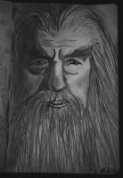 Gandalf Attempt by manupaivaellon