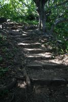 Path Stock 2 by hyannah77-stock