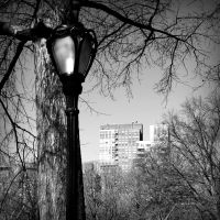 Lamp post 3 by angela-swift