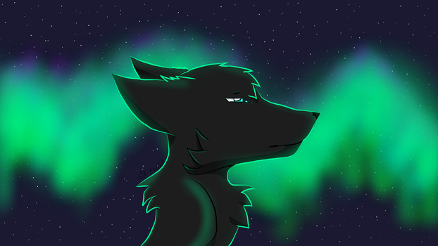 ~:The Other Side:~ by WolfTamerXD