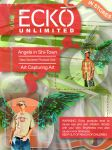 GRAPHIC DESIGN: Ecko Layout by UntouchableDesign