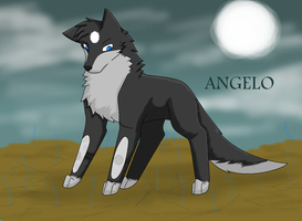 Angelo by Drum-Kal