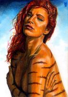 Tigra Sketch Card 3 by veripwolf