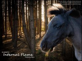 Internal Flame by RouxHP