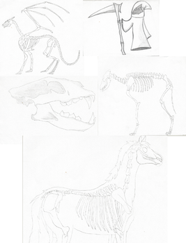 Bones sketches by Infected147