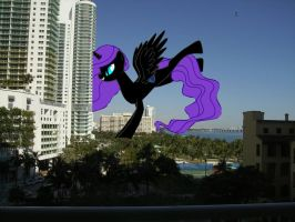 Nyx giving Queen Chrysalis the Eviction in Miami by OceanRailroader