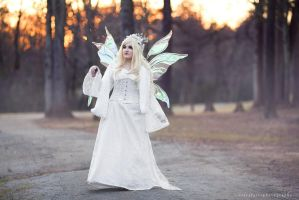 Winter Fairy Queen by KayleeOliverCosplay