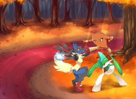 Lucario, Hitmonlee and Gallade sparring by Jiayi