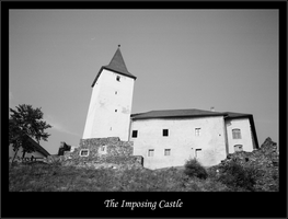 The Imposing Castle by bdjwill