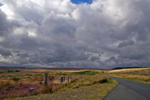 Northumberland Sky by parallel-pam