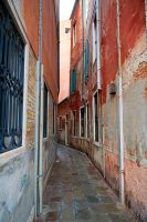 Calle by scoiattolissimo