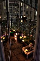 Balcony Garden Evolves Again by Lori-P-Photography