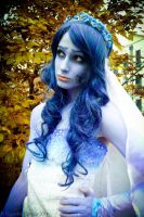 Corpse Bride - IV by marcellomasiero