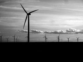 Renewable by Drocan