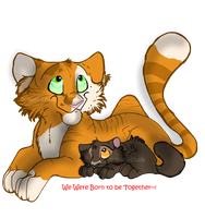 .:Basilkit and Pumakit:. by Wolf-Chalk