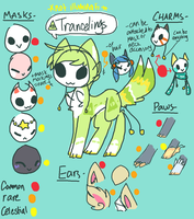TRANCELINGS REFERENCE by Celestial-Trance