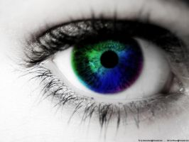 Colorfull Eye by wineass
