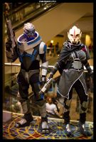 Garrus and Nyreen by Adnarimification