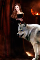 The witch and her werewolf by mistressvera