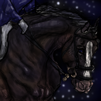 A little night ride by SLEC-EqIsMyLife