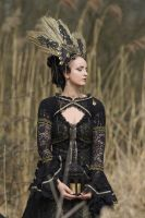 Stock - Gothic Headdress gold  and black  sideview by S-T-A-R-gazer