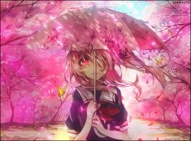 Cherry Blossoms by Mazycris