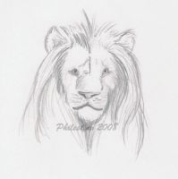 The Lion King by Philestino