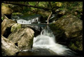 Padley X by Sato-photography