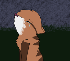 Leafpool -Someone like you- by Kittybrambleclaw989