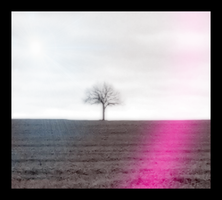 The Lone Tree by NightrunBlaze12
