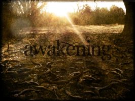 Awakening by cassaw-creative