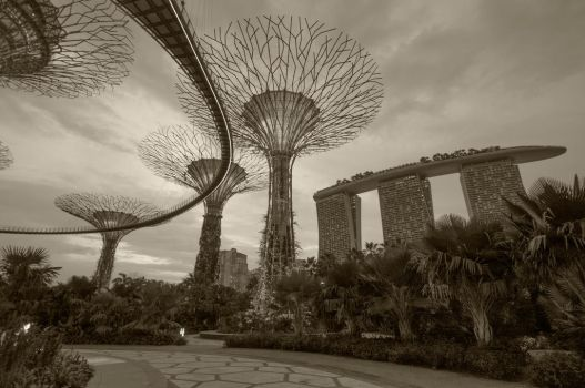 Singapore - Gardens By the Bay by ShadowRobber