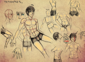 Male anatomy study by HaitiKage