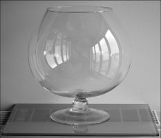 Glass Vase by FrankAndCarySTOCK