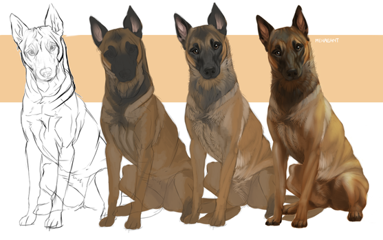 Dog digital painting - Step By Step. by Mekreant