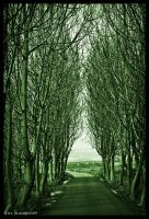 Green Way 02 by Green-Des