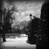 Winter III by CountessBloody