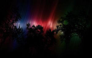 Northern Lights by tempus